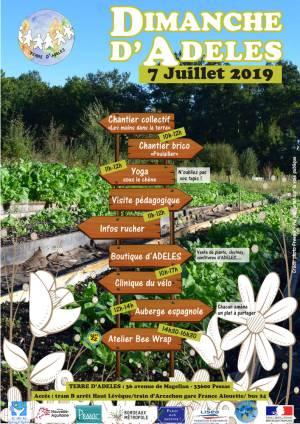 Affiche DDA du 7 juillet 2019