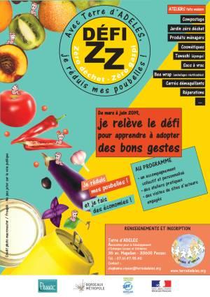 Affiche défi ZZ